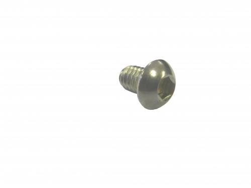 Allen Head Screw 13309RIC