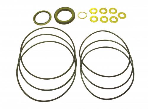 Hydraulic Motor Seal Kit - Old Style Danfoss DSP50/OD